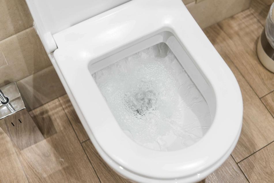 Was viele nicht wissen: DAS darf auf keinen Fall im WC entsorgt werden!