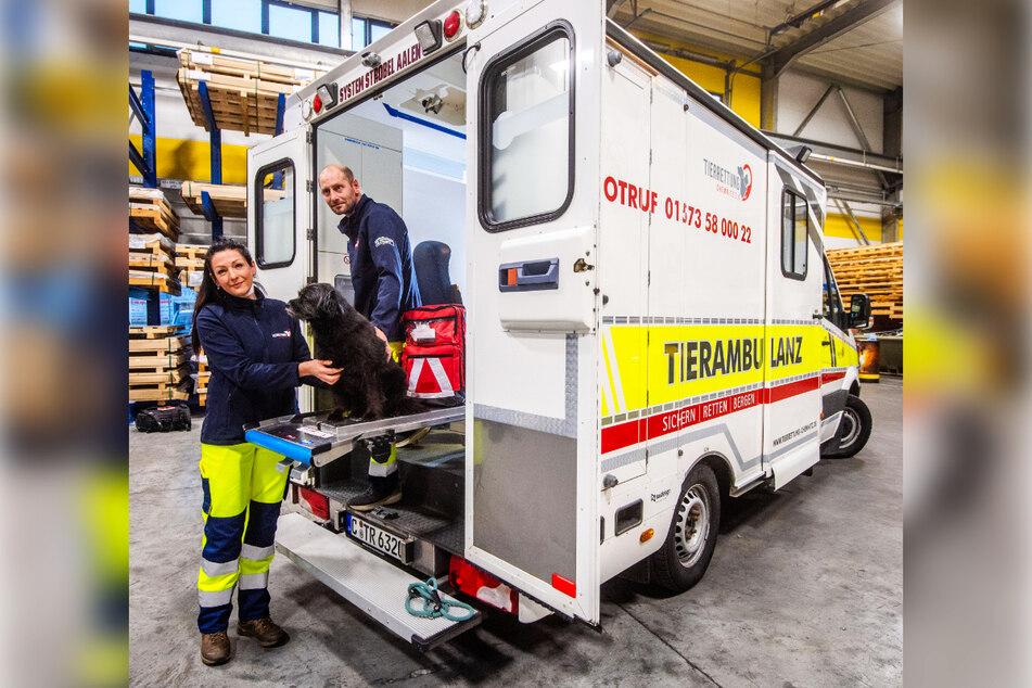 Sandra Kögel (45) und Enrico Lübke (43) haben sogar einen eigenen Tierrettungswagen.