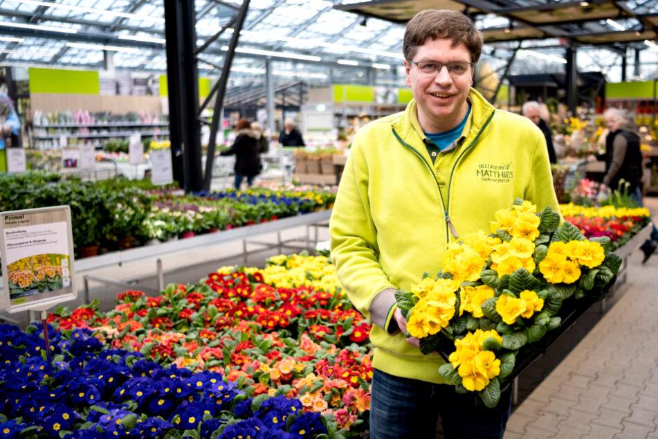 Ihr braucht Blumen für den Garten? Hier gibt es gerade starke Angebote