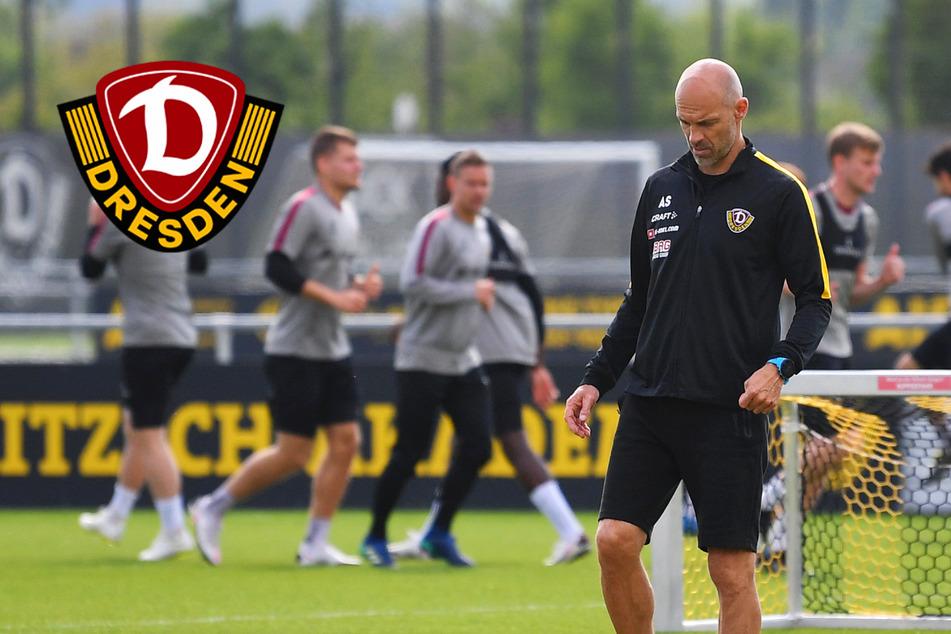 """Dynamo-Coach Schmidt freut sich auf neue Spielklasse: """"Brutale Liga, so gut""""!"""