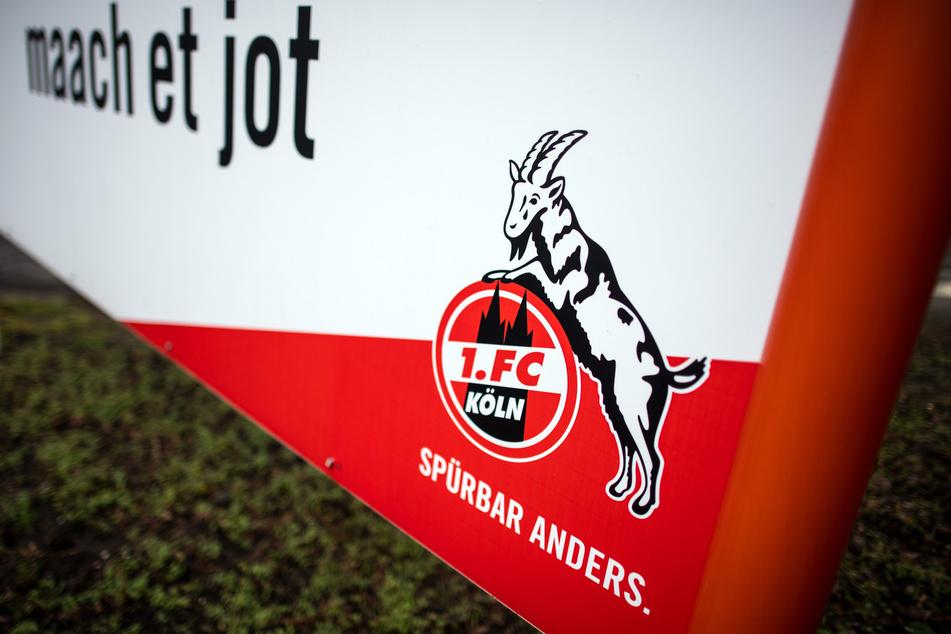 Wer kommt in den Mitgliederrat des 1. FC Köln?