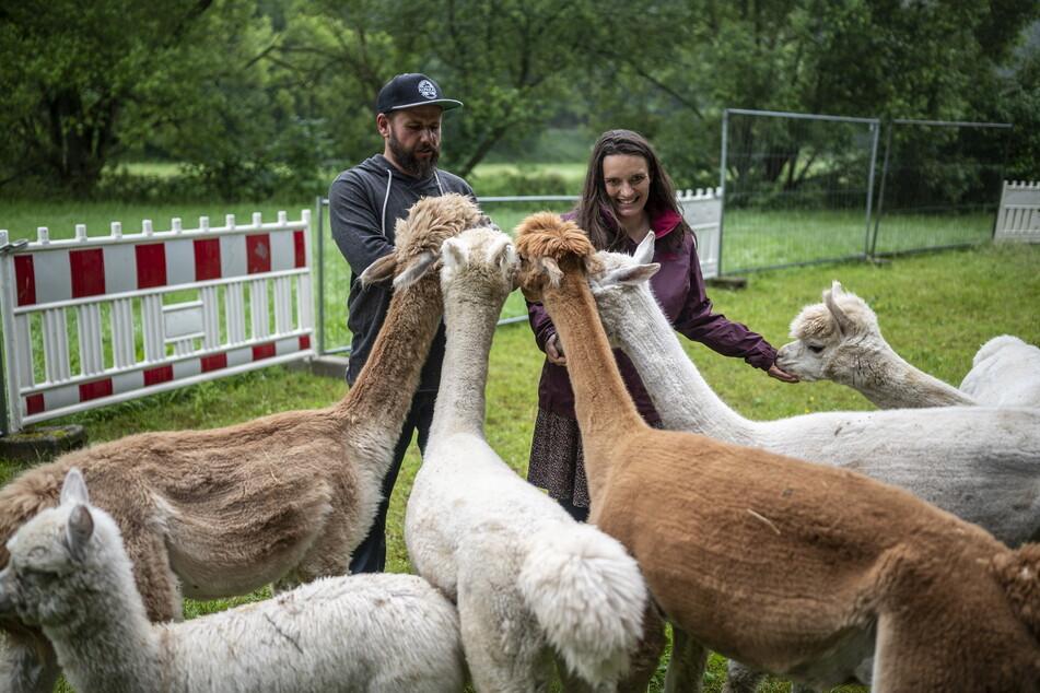 """Mittlerweile dreht sich das Leben von Marco (42) und Daniela Schönherr (35) rund um die """"Pakos""""."""