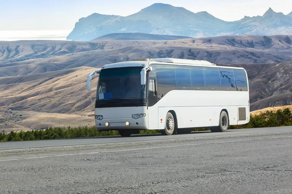 Bitte anschnallen: Japaner gehen online auf Bus-Reisen