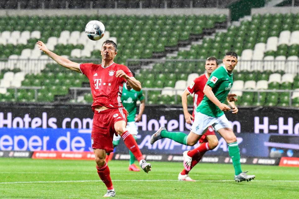 Große Lobby! Der FC Bayern München, hier Robert Lewandowski am Ball, darf auf Grund der Belastung in der Champions League auf eine späteren Einstieg in die neue Saison hoffen.