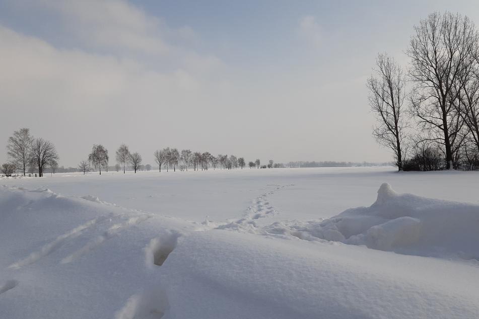 Ähnlich viel Schnee wie dieser Tage war auch im Jahr 1950 gefallen.