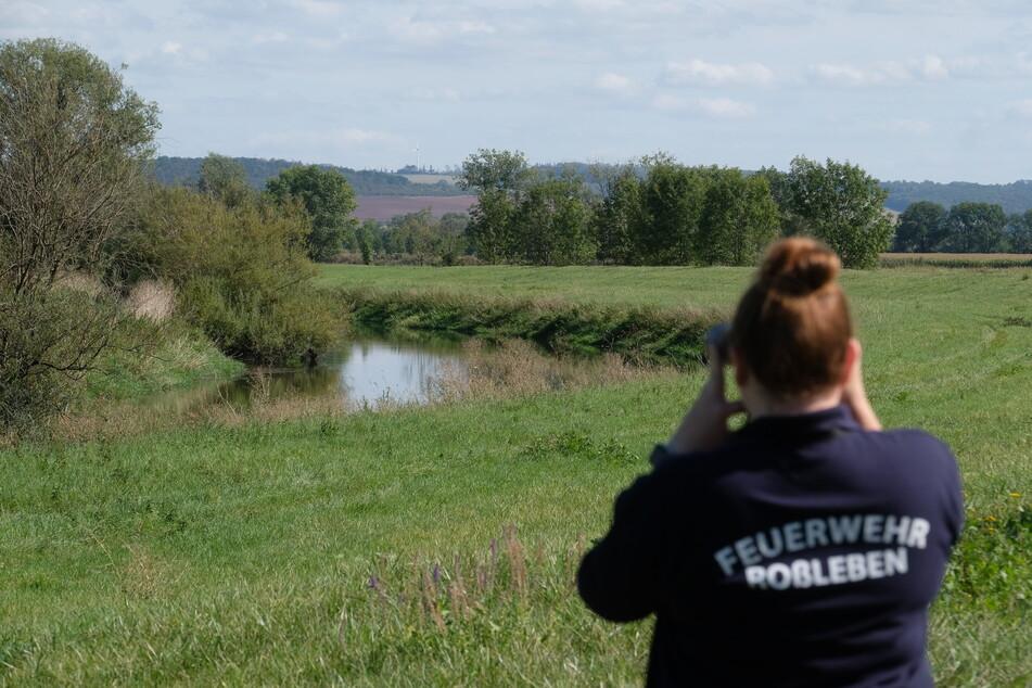 Ein Experte soll vor Ort ausmachen, ob es das Unstrut-Krokodil wirklich gibt. Die Suche der Feuerwehr blieb bisher ohne Ergebnis.