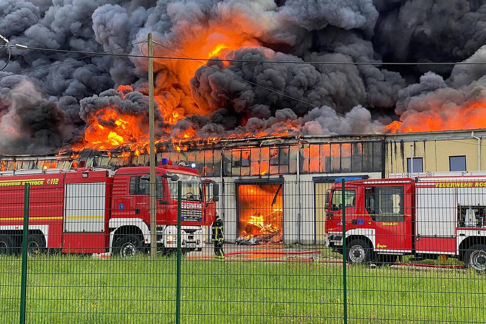 Im Rostocker Überseehafen brennt eine Lagerhalle.
