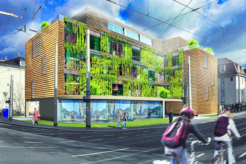 Viel Holz, viel Grün: So soll der Öko-Neubau der Baugemeinschaft (14 Mitglieder) aussehen. Es wird zum Beispiel auf Car-Sharing-Stellplätze gesetzt.