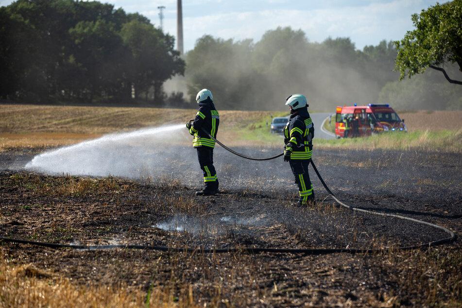 Auf diesem Feld zwischen Schmölln und Putzkau brannte es auf einer Fläche von 10x30 Metern.