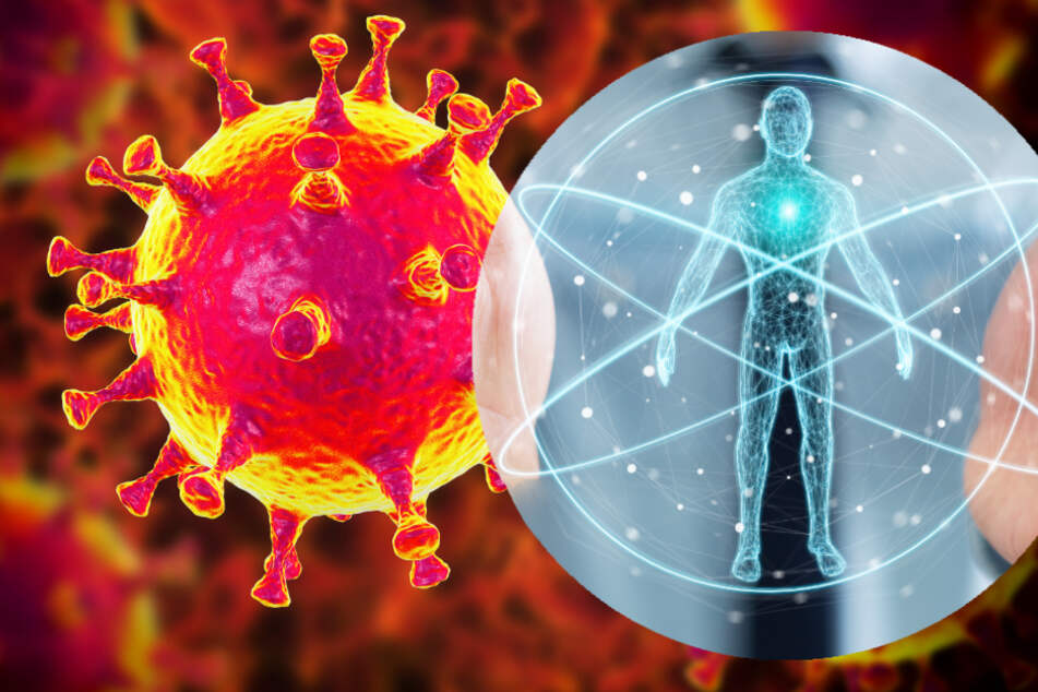 Experten einig: Coronavirus steckt schon seit Jahren im Menschen drin