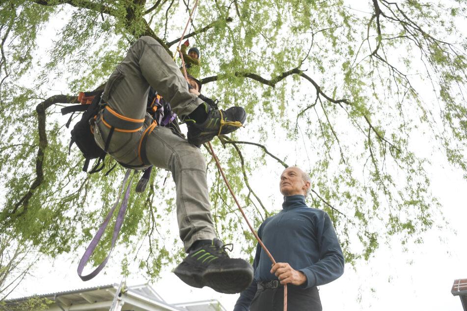 Professor protestiert mit Baumbesetzern an eigener Hochschule