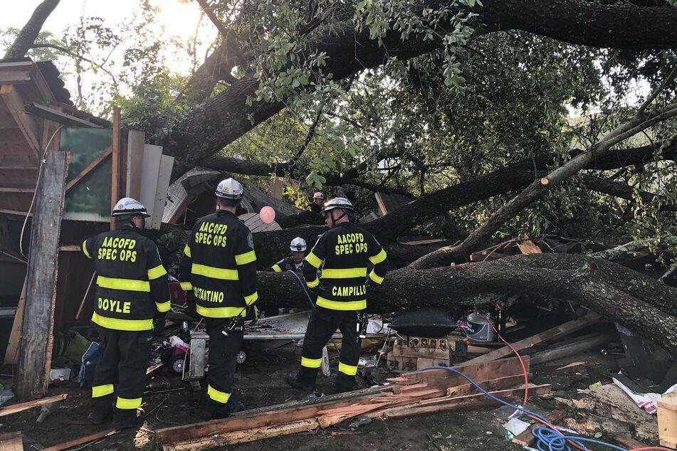 Baum fällt auf Gebäude: mindestens 19 Verletzte, darunter auch Kinder