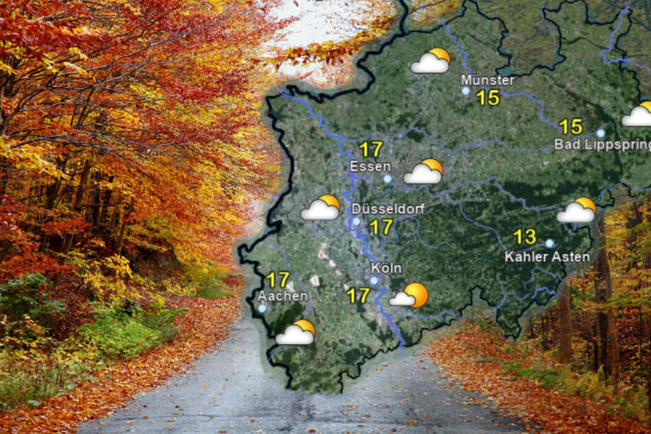 NRW: Mildes November-Wetter zum Wochenstart