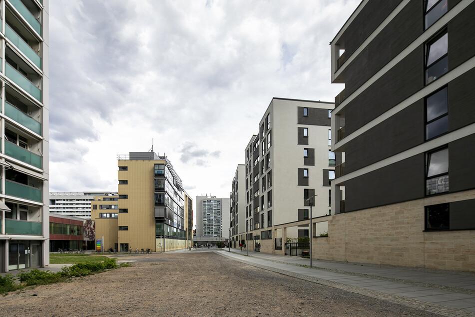 """Diese Straße befindet sich laut Stadtverwaltung nur im """"Dornröschenschlaf""""."""