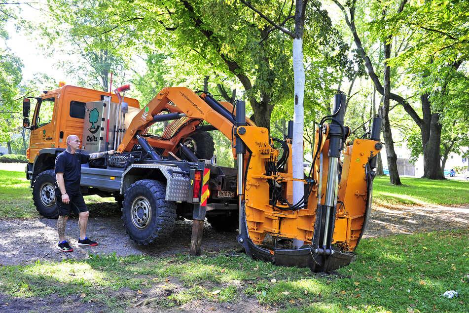Maschinenführer Gerhard Urban (48) lässt die Schaufeln mit einem Druck von bis zu 15 Tonnen ins Erdreich gleiten und hebt gleichzeitig die neue Grube für den Baum aus.
