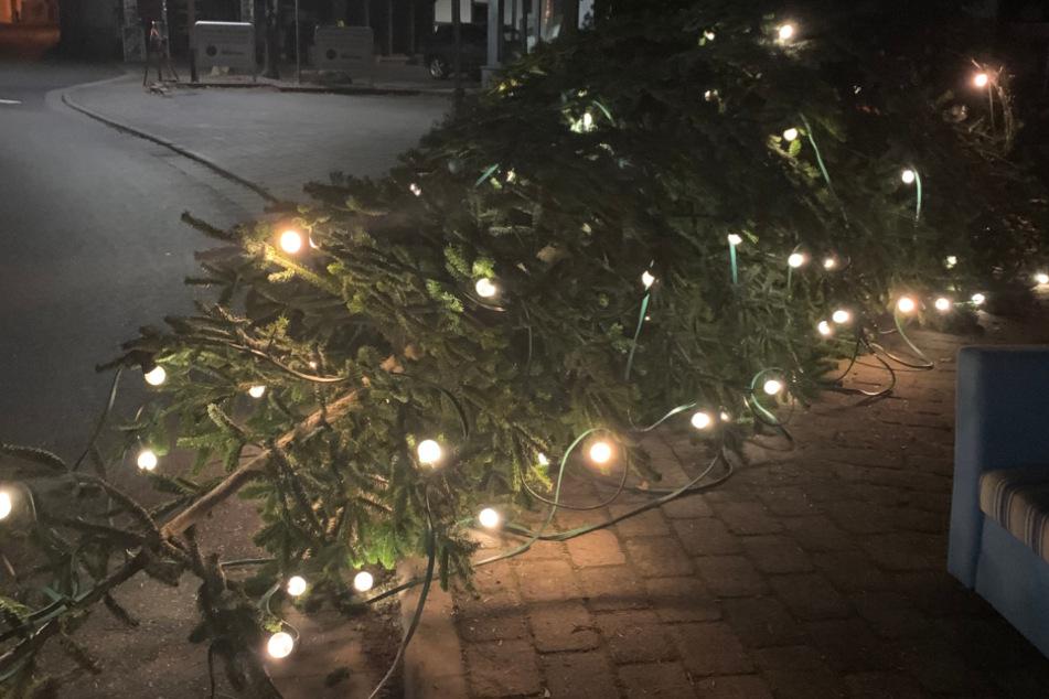 """Weihnachts-Grinch sägt Christbaum ab: Polizei sucht Täter, der Säge """"vermisst"""""""