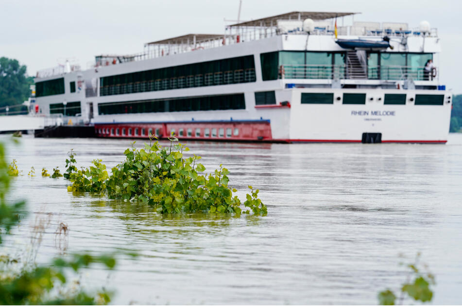 Ein Touristenschiff liegt auf dem Rhein bei Mannheim vor Anker. Die Schifffahrt soll nach dem Hochwasser im Laufe der Woche wieder freigegeben werden.