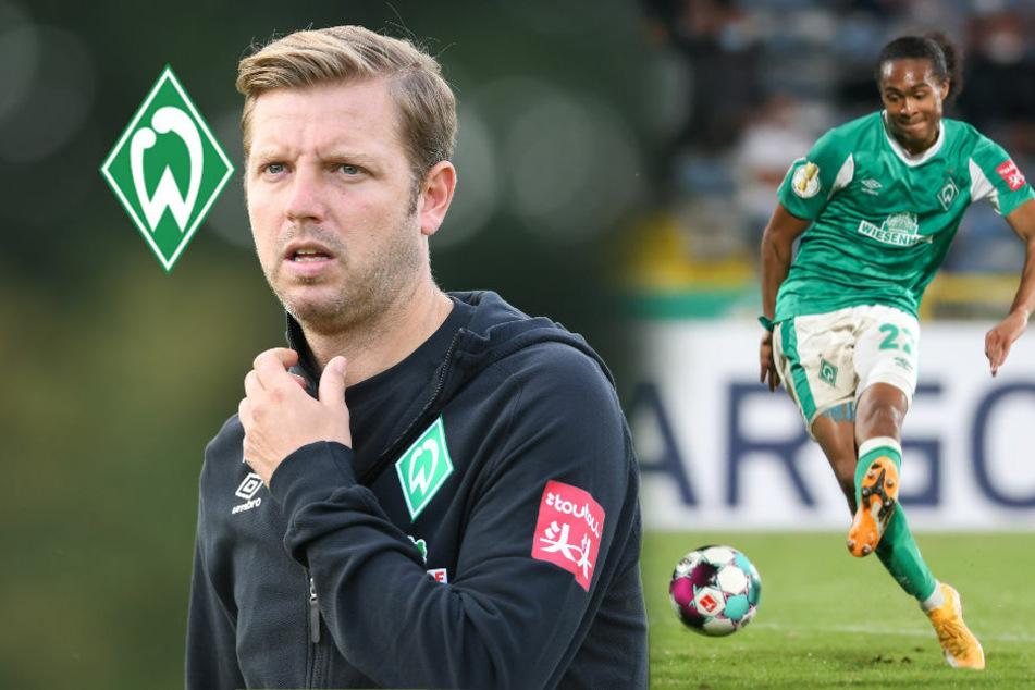 SV Werder Bremen in der Bundesliga-Vorschau: Zurück zu alter Klasse?