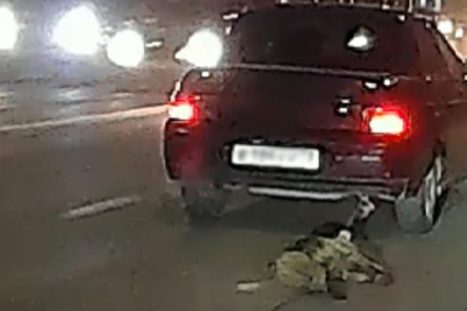 Meterlange Blutspur auf der Straße: Mann schleift Hund an Auto mit