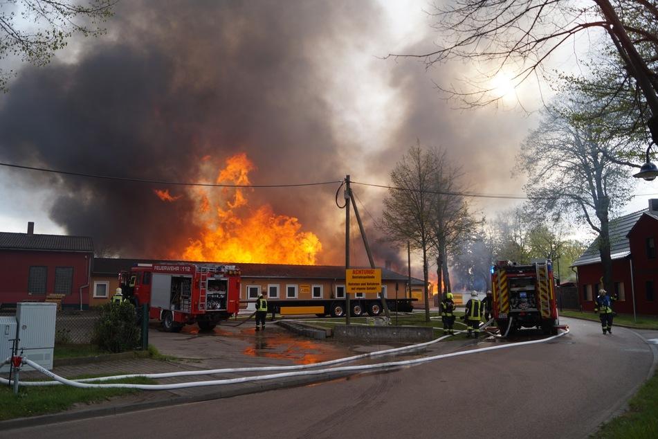 Mehrere Ortsfeuerwehren rückten an, um den Großbrand zu löschen.