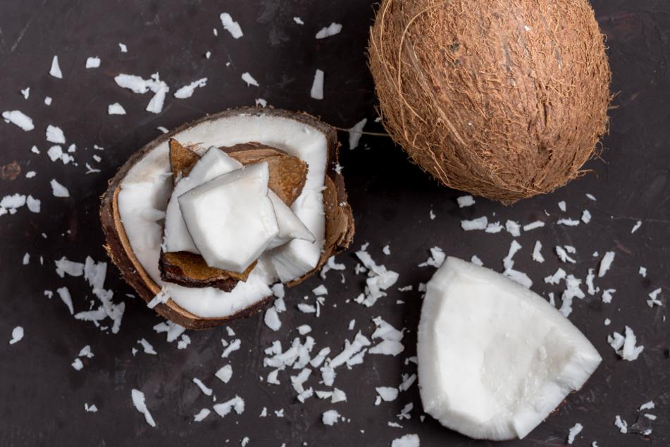 Salmonellen! Hersteller ruft Kokosstücke zurück