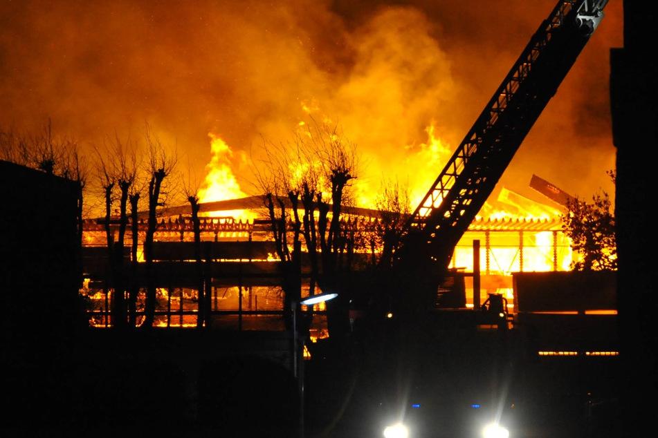 Flammen schlagen vier Stunden in die Höhe: Lagerhalle für Holz brennt vollständig ab