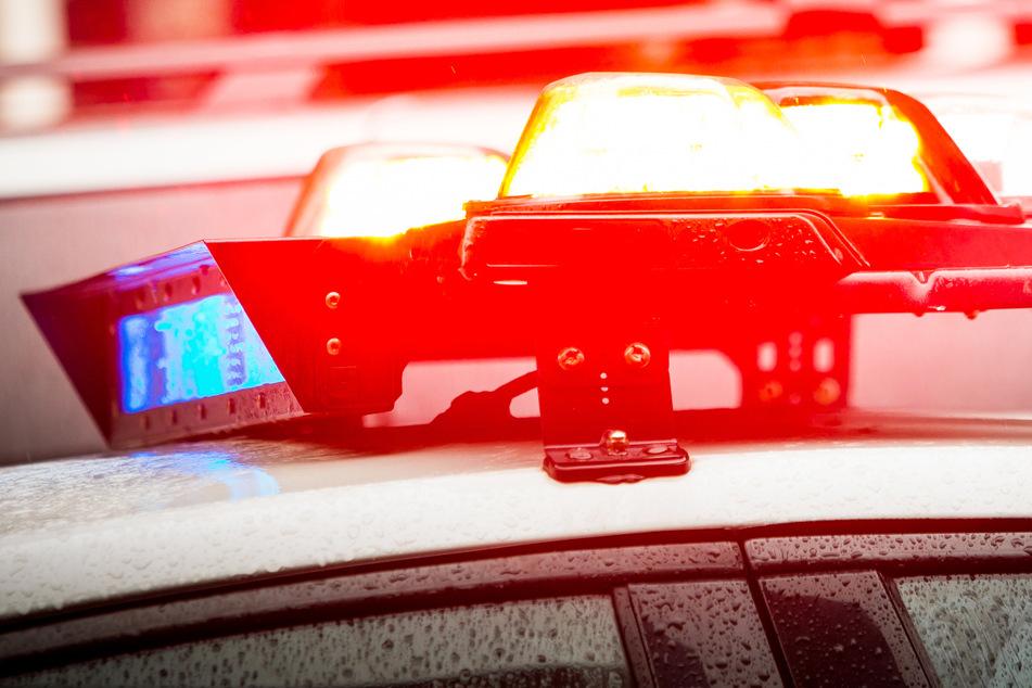 Bei einem schweren Verkehrsunfall im US-Bundesstaat Alabama sind nach einem Medienbericht zehn Menschen ums Leben gekommen.
