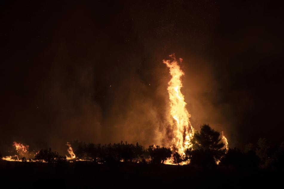 Flammen steigen aus einem Waldgebiet in der Küstenregion nahe Galataki auf.