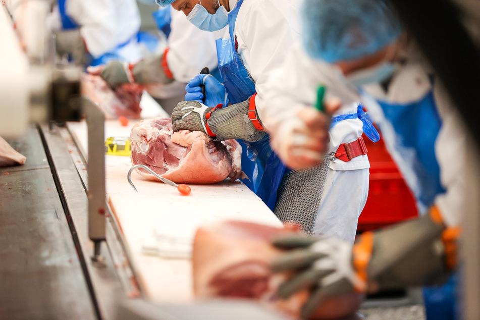 Corona-Ausbruch in Schlachthof: Jetzt schon rund 100 Infizierte!