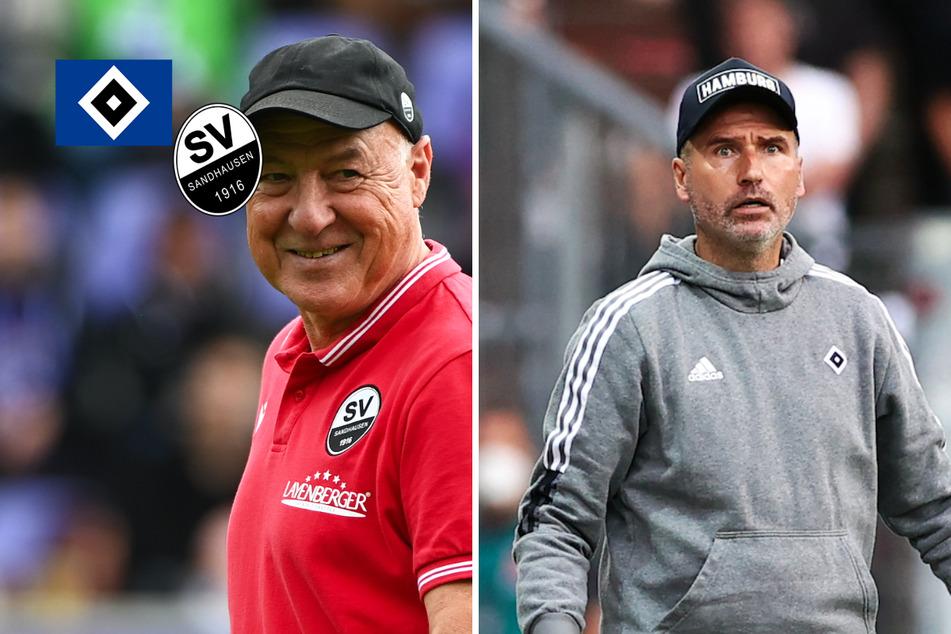 HSV empfängt den SV Sandhausen: Alle wichtigen Infos zur Partie
