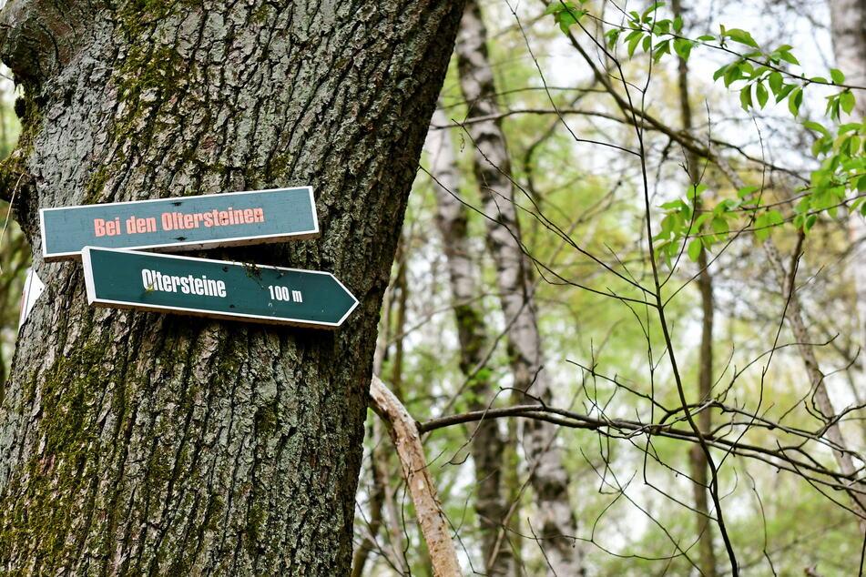 Schilder weisen in der Heide auf die Steine hin.