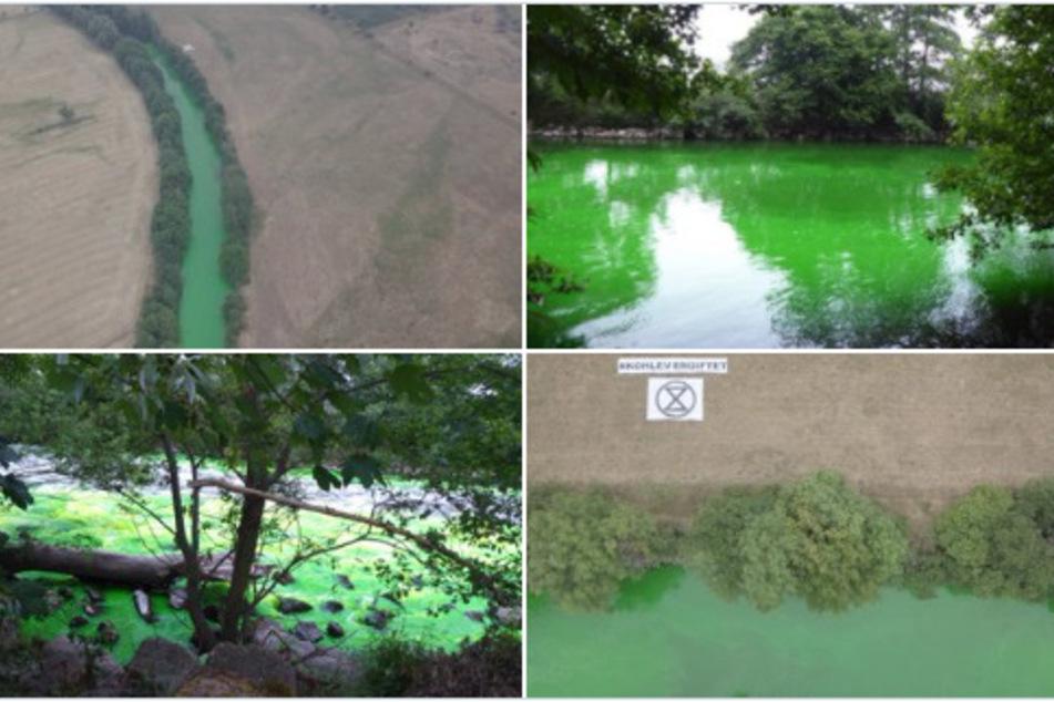 """Gefährlicher Eingriff: """"Umweltaktivisten"""" färben Rur grün!"""