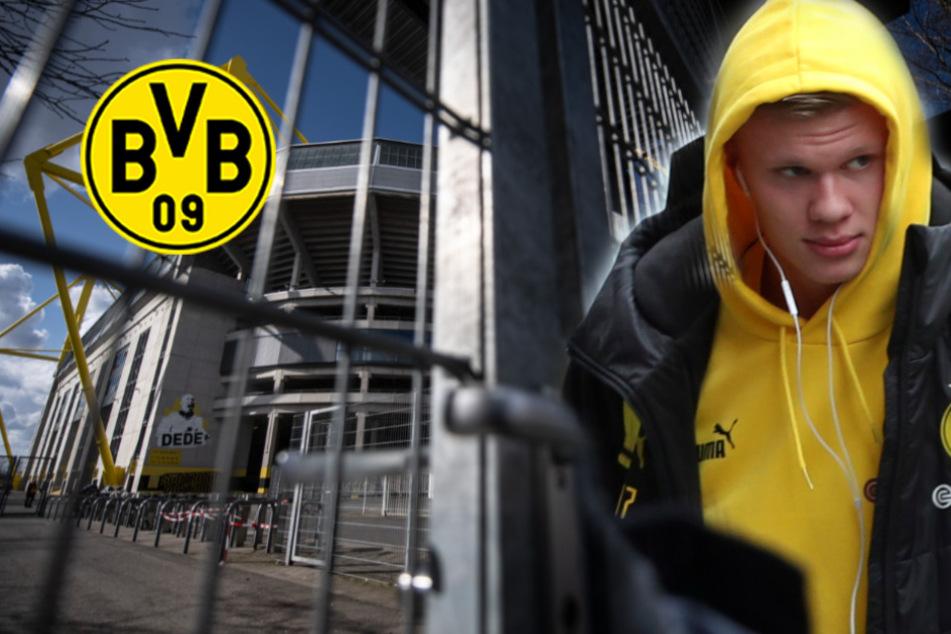 BVB mit Shutdown: Trainingsbetrieb eingestellt, Fanshops zu