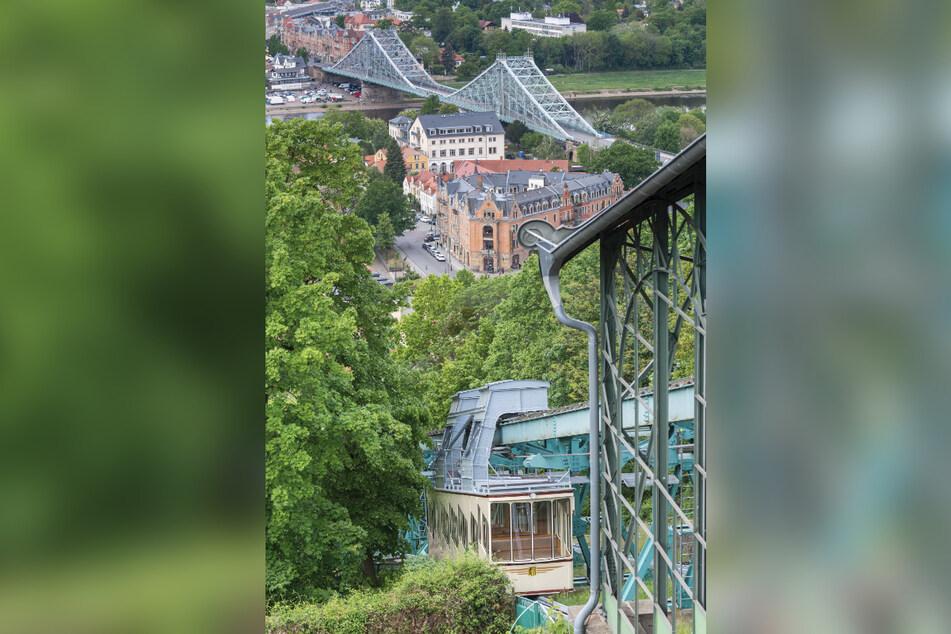 Seit 120 Jahren befördert die Schwebebahn am Loschwitzer Elbhang Einwohner und Touristen.