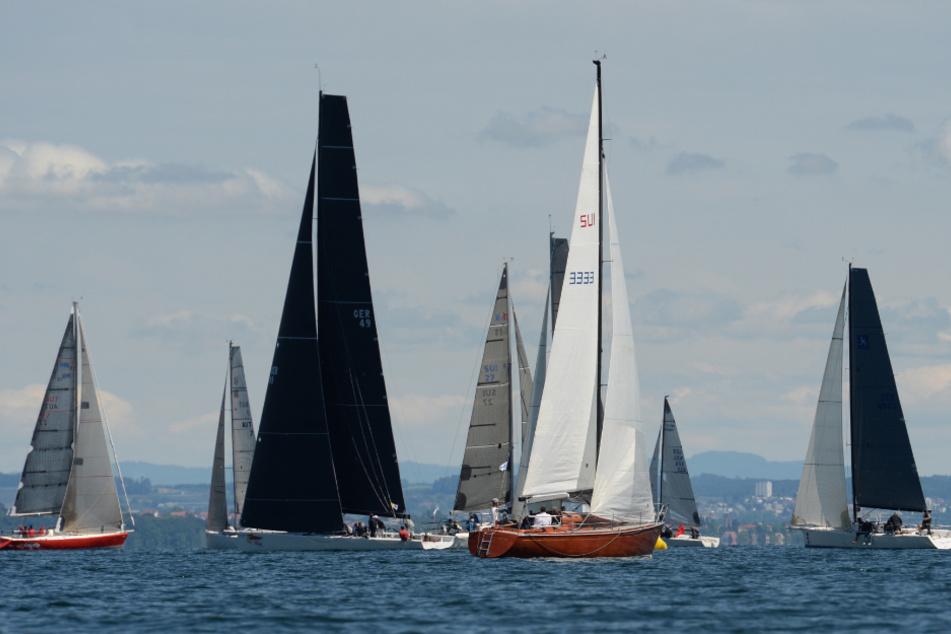 Segelboote krachen zusammen: 50.000 Euro Schaden