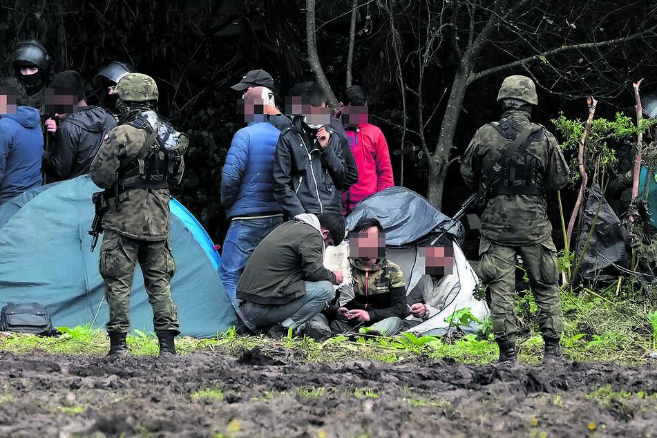 Anfang September an der weißrussischen Grenze: Polnische Sicherheitskräfte umringen Migranten, die an der Grenze zu Weißrussland festsitzen. Trotzdem schaffen es Tausende bis nach Deutschland.