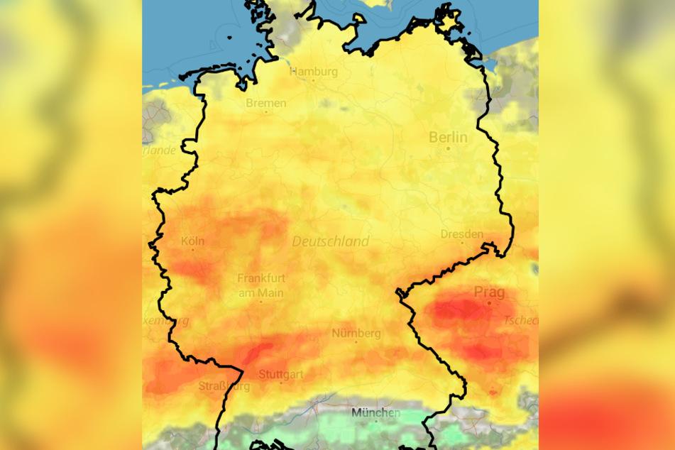 In den kommenden Tagen wird es nochmals richtig warm. (Bildmontage)