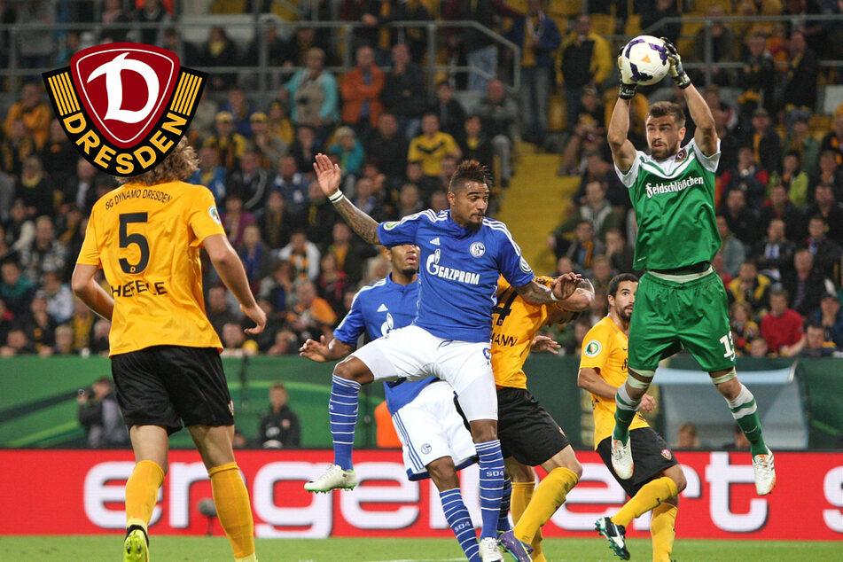 Dynamo: Mit Kirstens Pokalrezept von 2014 kann es auf Schalke etwas werden!