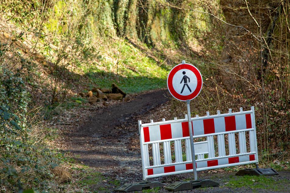 Lebensgefahr! Aus diesem Grund werden so viele Waldwege in Chemnitz gesperrt