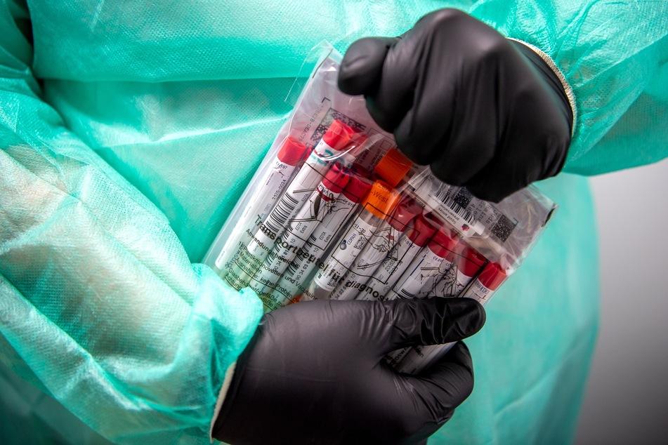 Niedersachsen, Nordhorn: Proben für einen PCR-Test werden von einem Mitarbeiter im Corona-Testzentrum verpackt.