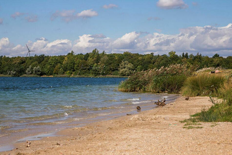 Der Raubüberfall spielte sich im Ufer des Kulkwitzer Sees ab.