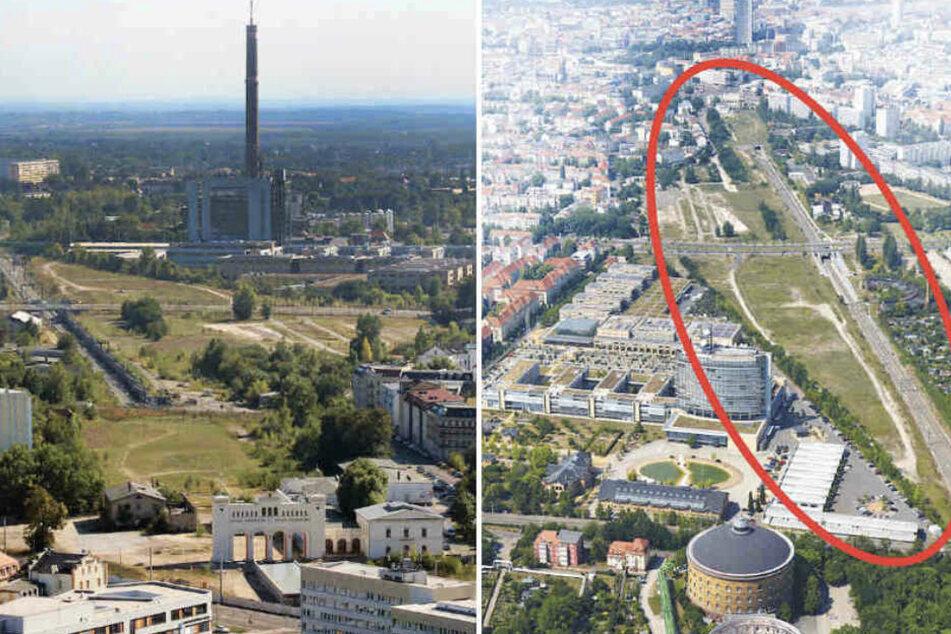 Ein Park, Gewerbeflächen und viele Wohnungen: Für das neue Wohnquartier gibt es einige Pläne.