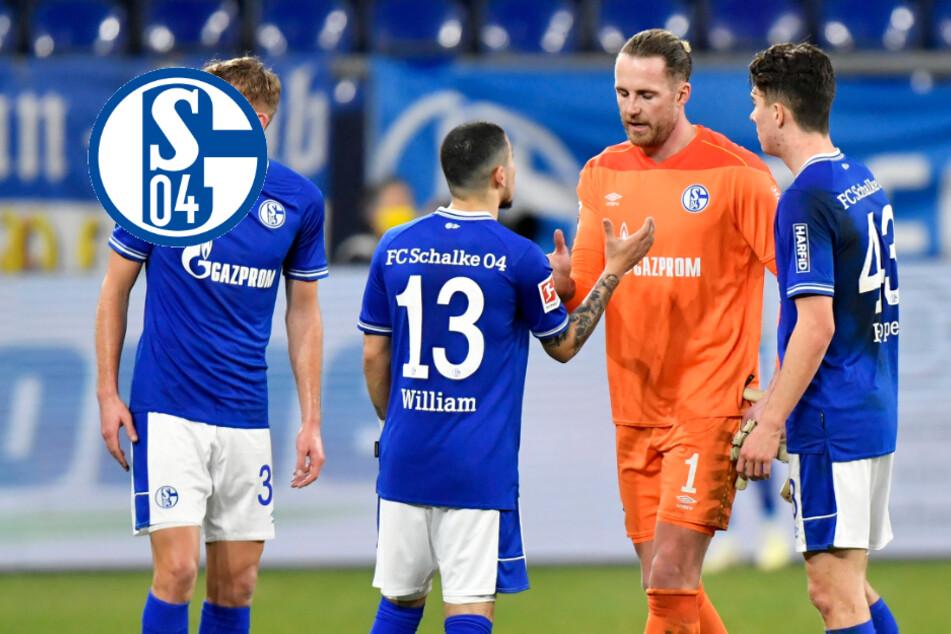 Ausschreitungen auf Schalke: Fans wollen Eingang stürmen