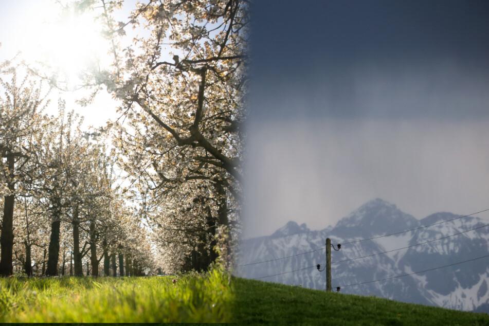 Während Obstbäume in voller Blüte stehen (links), braut sich im Gebirge etwas zusammen (rechts).
