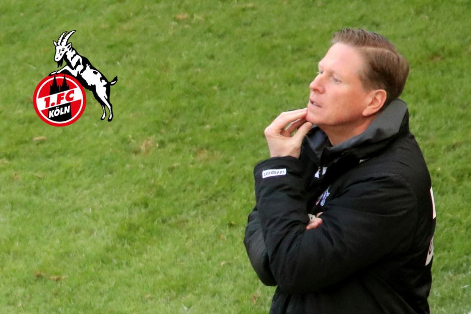 Gisdol trainiert weiter den 1. FC Köln: Seine Hoffnung für den Klassenerhalt