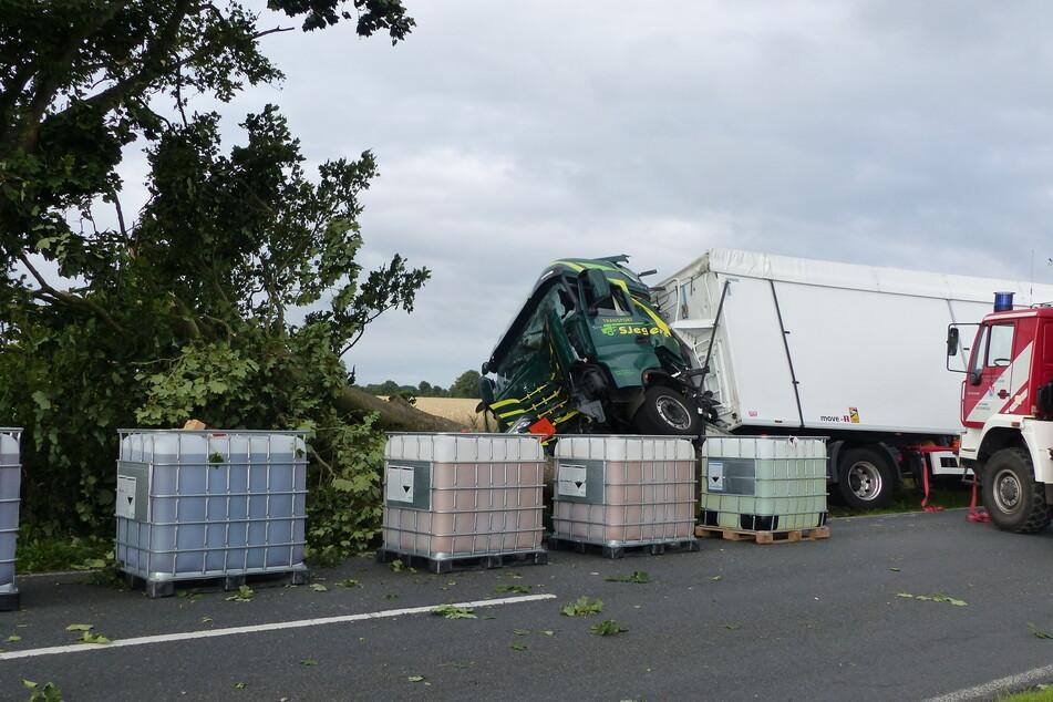 Reh kracht in Windschutzscheibe von Lkw: Fahrer bei Unfall in Neuenwalde  schwer verletzt! | TAG24