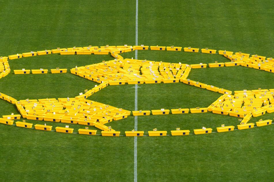 350 Fußballfans durften sich jeweils einen Kasten holen und vor dem Stadion mit bienenfreundlichen Pflanzen bestücken lassen.