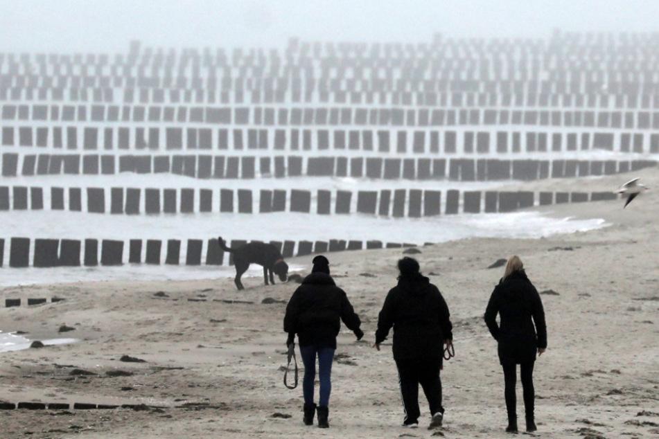 Tod auf der Ostsee für vier Millionen Euro vorgetäuscht: Mann (53) vor Gericht