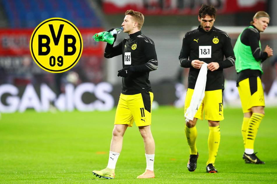 BVB bangt vor Champions-League-Kracher um zwei Leistungsträger!
