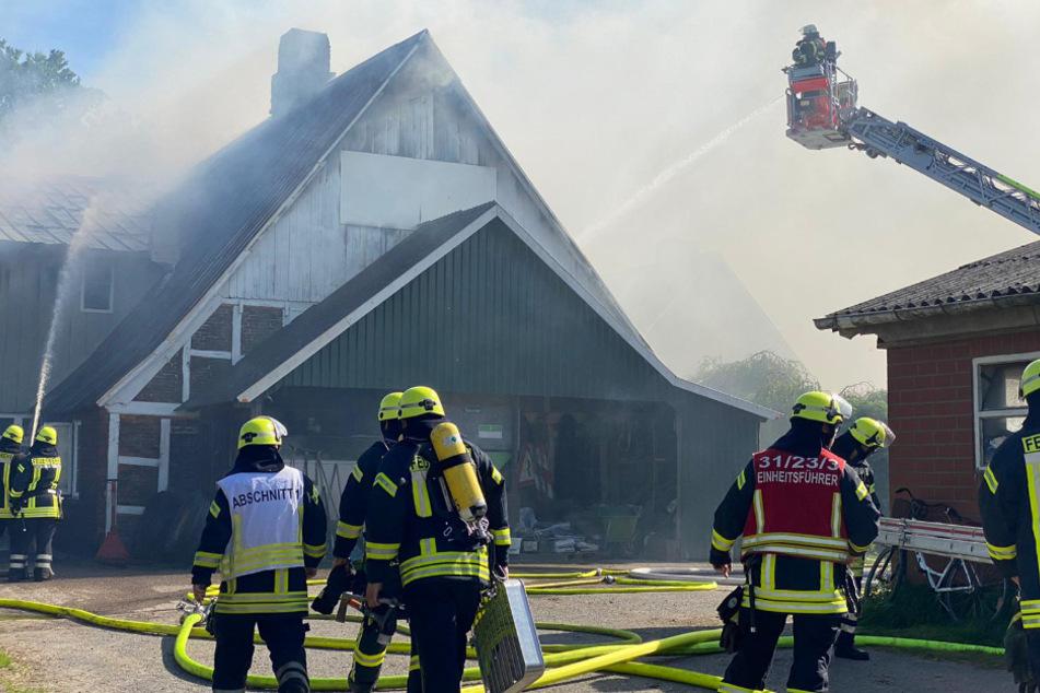 Stall geht in Flammen auf: Kälber und Hund im Gebäude